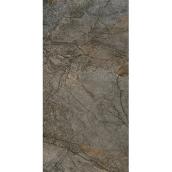 Плитка DL502900R СИЛЬВЕР РУТ СЕРЫЙ обрезной (600x1195), KERAMA MARAZZI